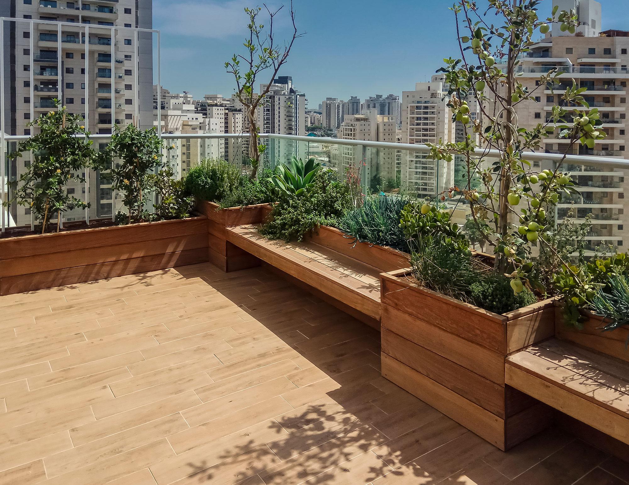 גינה בדירת גג